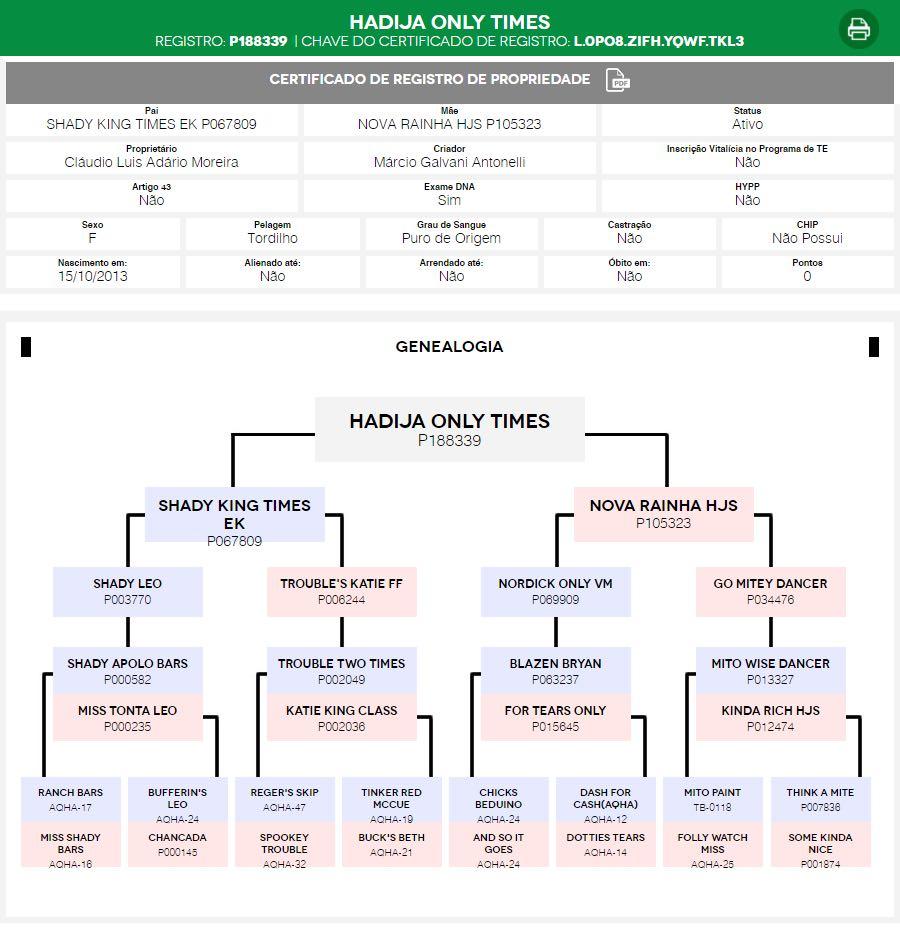 Árvore Genealógica Hadija Only Times