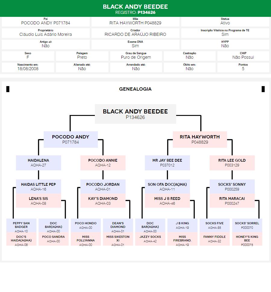 Árvore Genealógica Black Andy Beedee